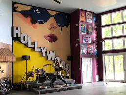 Elvis statue performing in unusual Chesterfield Home with 50's and 60's Hollywood theme